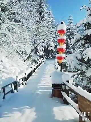 伊尚斐斐的最美雪乡~童话的世界🥰