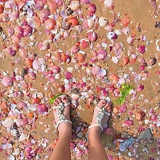 流光飞舞MYY的烟台小众景点—少女心爆棚的粉色贝壳沙滩