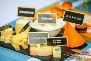 如此美味,法国奶酪!
