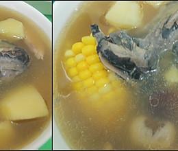冬日大补乌骨鸡汤--以内养外的做法