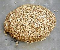燕麦欧包的做法图解2