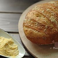 5分钟面包(5)-葡萄牙玉米面包Broa(Portuguse Corn Bread)的做法图解7