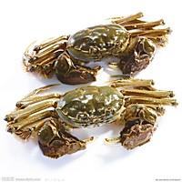 宴客体面菜·排骨炖河蟹的做法图解1