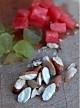 5分钟的降低胆固醇且减肥食谱——水果燕麦冰粥的做法图解2