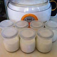 自制酸奶的做法图解6