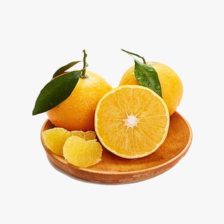 爱媛果冻橙中大果12枚