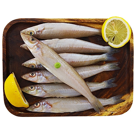 深白至味 越南鲜冻沙丁鱼 500克/袋 大号