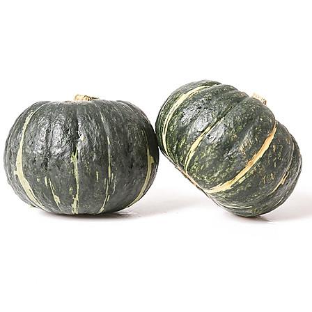 一槑 贝贝南瓜板栗味小南瓜 4.8斤