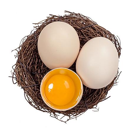 谷物饲养鲜鸡蛋 20枚装 匠心包装 包邮