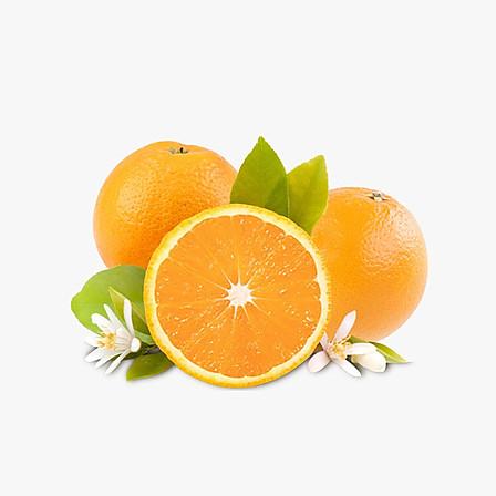 湖南麻阳冰糖橙 5斤装