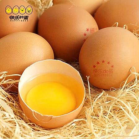 快乐的蛋 金牌五星鲜鸡蛋 20枚