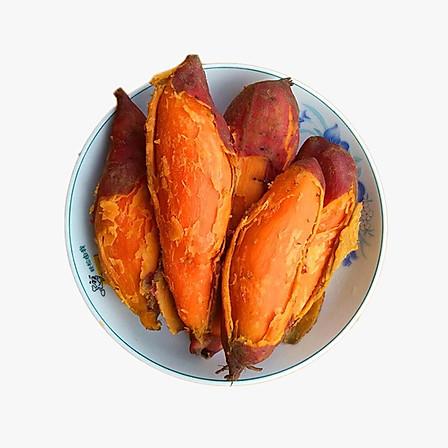 福建六鳌红薯5斤小果